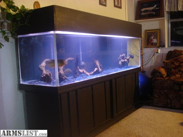 Armslist For Trade 210 Gallon Aquarium Fish Tank