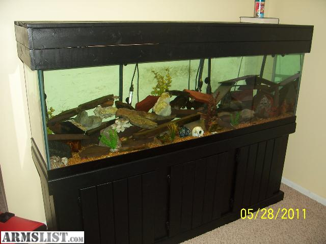Used 125 Gallon Aqaurium With Matching Black Canopy And Standlight Strip2 Fluval Canister Filtersheatergravelgood Conditionwill Trade For Nice Gun Or