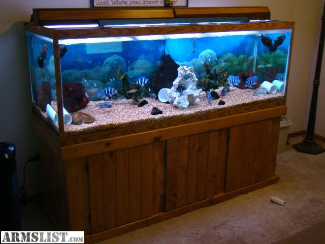 armslist for sale 180 gallon aquarium complete setup