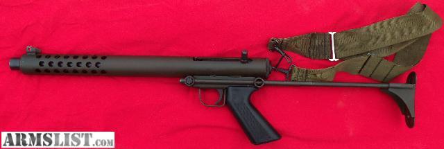 Cobray Terminator Gun
