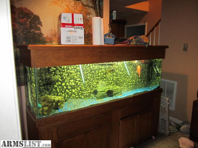 Armslist for sale trade 125gal fish tank and everything for 1000 gallon fish tank for sale