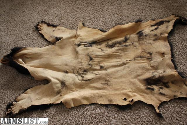 I Have A Bear Skin Rug / Pelt For Sale Or Trade. I Am Always Interested In  Trading For Firearms (I Have A Wis. CC Permit, So I Can Legally Own  Firearms), ...