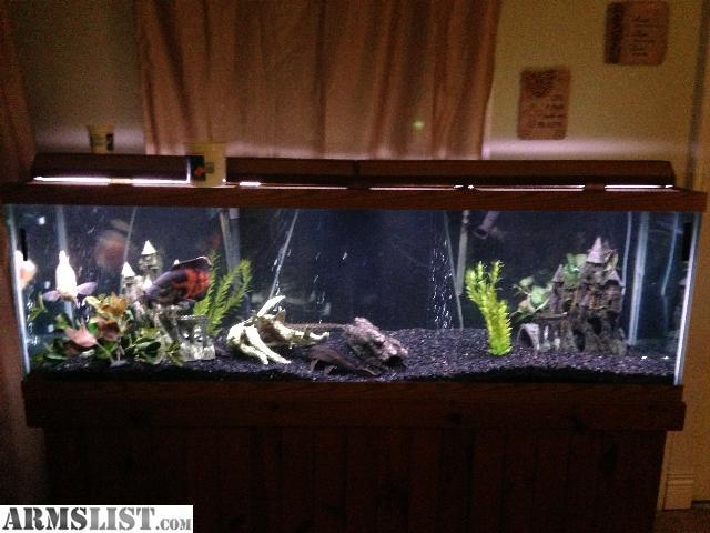 Armslist for sale 125 gallon fish tank for 125 gallon fish tank stand