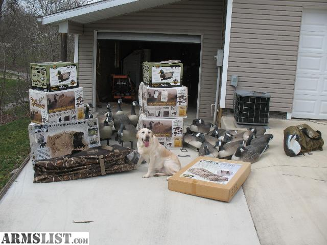 Lay Down Blinds >> ARMSLIST - For Sale: DECOYS - goose, duck, layout blinds ...