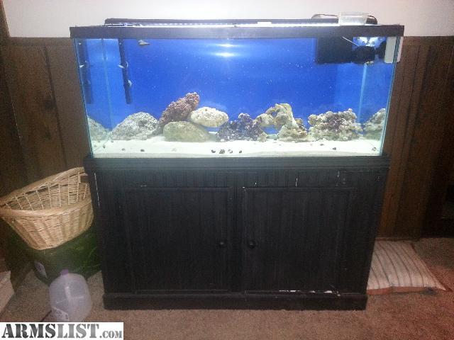 Armslist for sale trade complete 75 gallon saltwater for Saltwater fish tank for sale