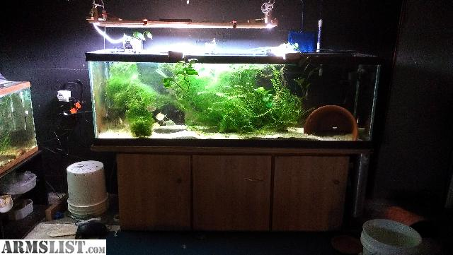 armslist for sale 125 gallon aquarium