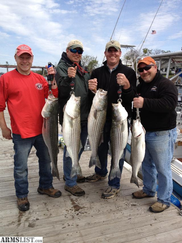 Armslist for sale striped bass fishing charters in for New york fishing trips