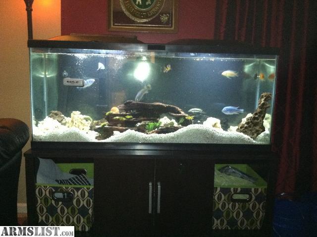 Armslist For Trade Wtt Aquarium For Gun