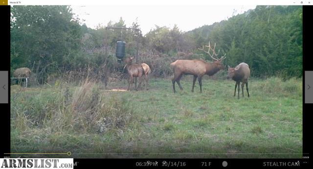 Armslist for sale elk hunt private ranch in kiowa for Oklahoma lifetime fishing license