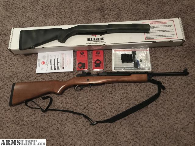 Ruger mini 14 stock options