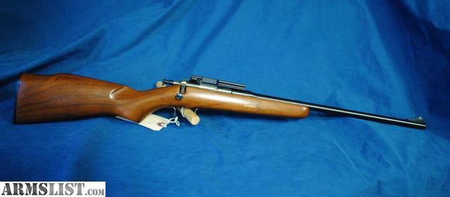 Rogue Chipmunk 22 Rifle Related Keywords & Suggestions - Rogue