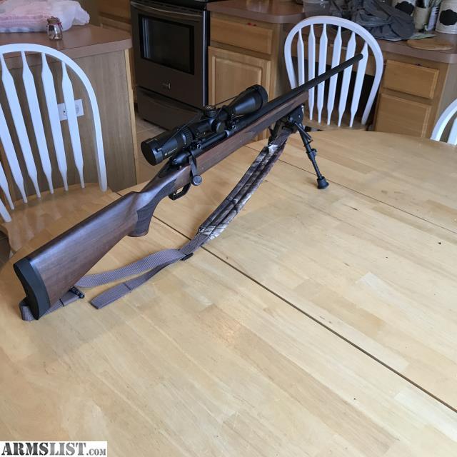 Remington 783 Walnut Stock Picks Related Keywords & Suggestions