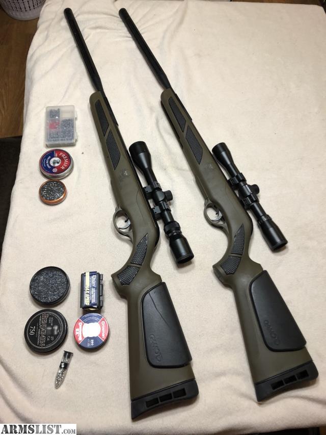 ARMSLIST - For Sale/Trade: Set of Gamo Bull Whisper for a Rimfire Rifle