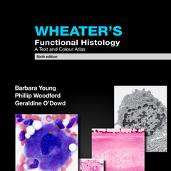 Wheater's Functional Histology, Sixth Edition