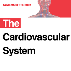 The Cardiovascular System, 2nd Edition