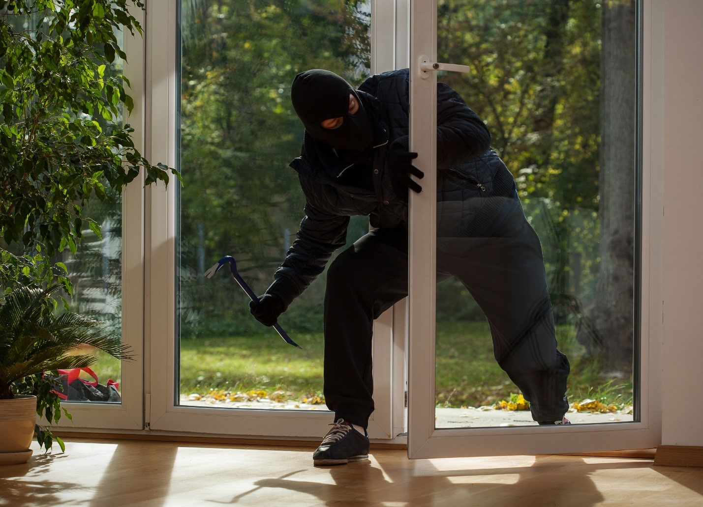 6 Different Types of Burglars You Should Be Aware Of