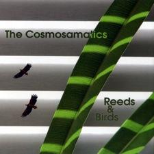 photo reedsampbirds.jpg