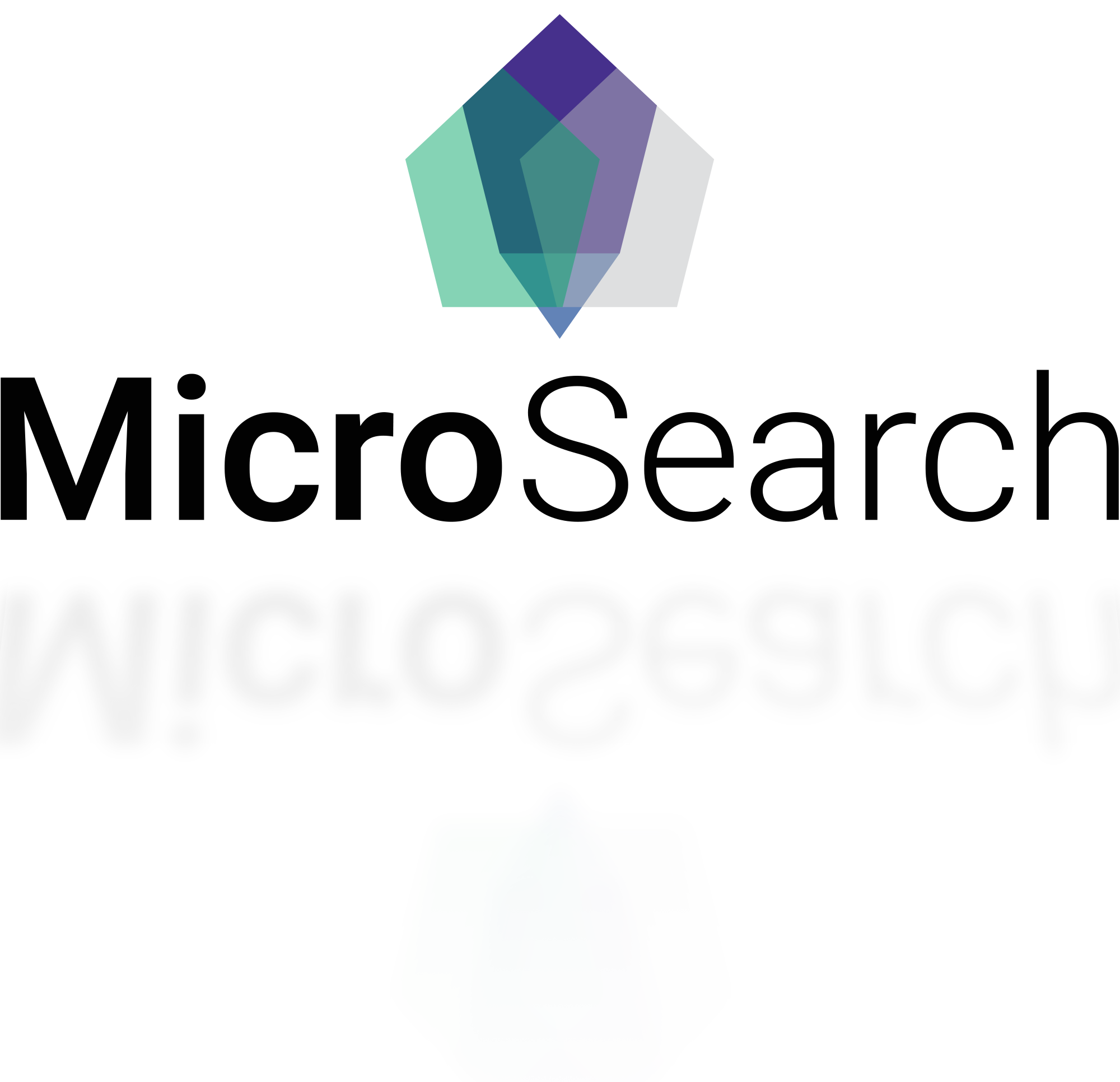 MicroSearch Logo