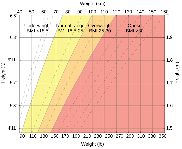 """A chart has an x-axis labeled """"weight"""" (pounds/kilograms) and a y-axis labeled """"height"""" (meters and feet/inches). Four areas are shaded different colors indicating the BMI for ranges of weight and height. The """"underweight BMI <18.5"""" area begins at approximately 90 pounds and 4'11"""" and extends to approximately 160 pounds and 6'6"""". The """"normal range BMI 18.5–25"""" area covers approximately 90–120 pounds at height 4'11"""" and extends to approximately 160–220 pounds at height 6'6"""". The """"overweight BMI 25–30"""" area covers approximately 120–140 pounds at height 4'11"""" and extends to approximately 220–265 pounds at height 6'6"""". The """"obese range BMI >30"""" area covers approximately 140–350 pounds at height 4'11"""" and extends to approximately 265–350 pounds at height 6'6."""""""