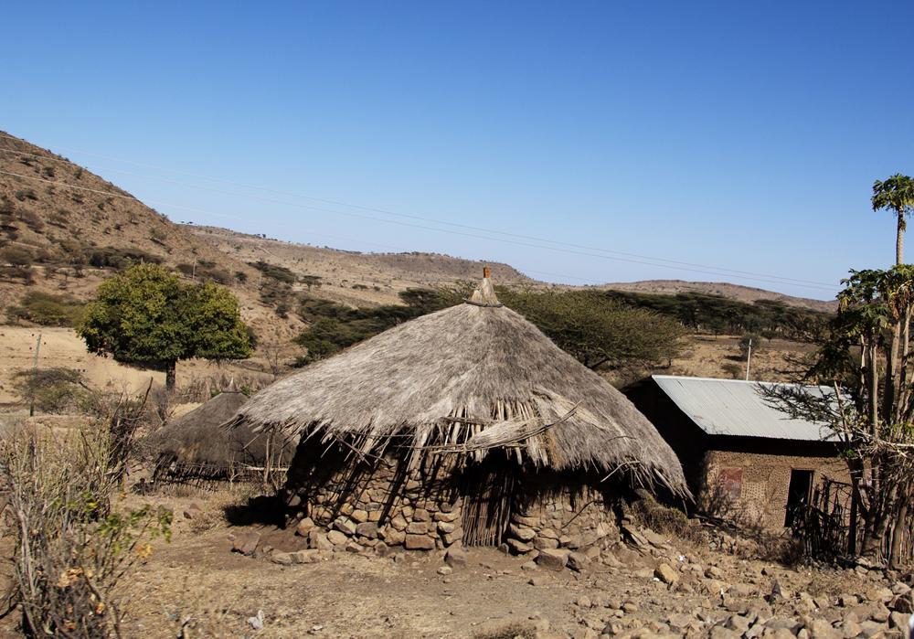 Figure (a) shows a grass hut.