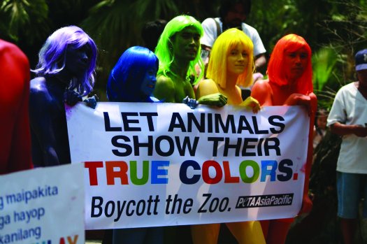 "An image of a group of six people, each one painted a different color, holding a sign that reads ""Let animals show their true colors. Boycott the zoo. Peta Asia Pacific.""."