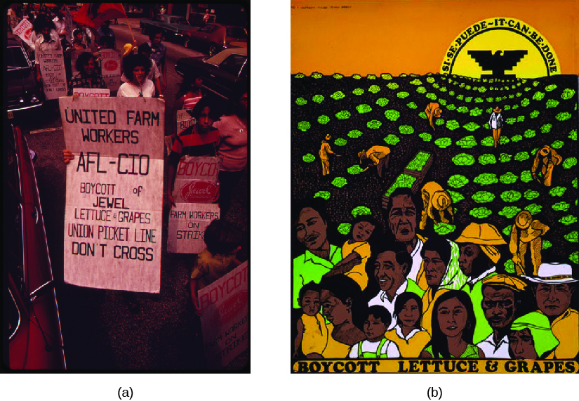"""Image A is of a group of people carrying signs. The signs read """"United Farm Workers AFL-CIO boycott of Jewel Lettuce & Grapes Union Picket Line Don't Cross"""" and """"Boycott, Farm Workers on Strike"""". Image B is of a poster that shows people picking crops in a field. The sun rises in the background. In the center of the sun is an eagle, and text along the sun reads """"Si se puede ~ It can be done"""". Text at the bottom of the poster reads """"Boycott Lettuce & Grapes""""."""