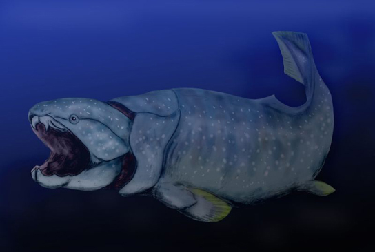 The illustration shows a large fish with a very wide mouth.