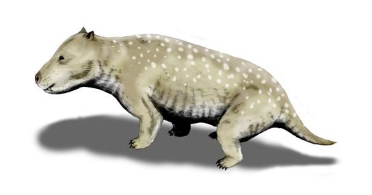 The illustration shows an animal resembling a short-haired dog.