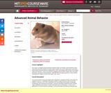 Advanced Animal Behavior, Spring 2000