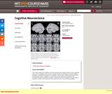 Cognitive Neuroscience, Spring 2006