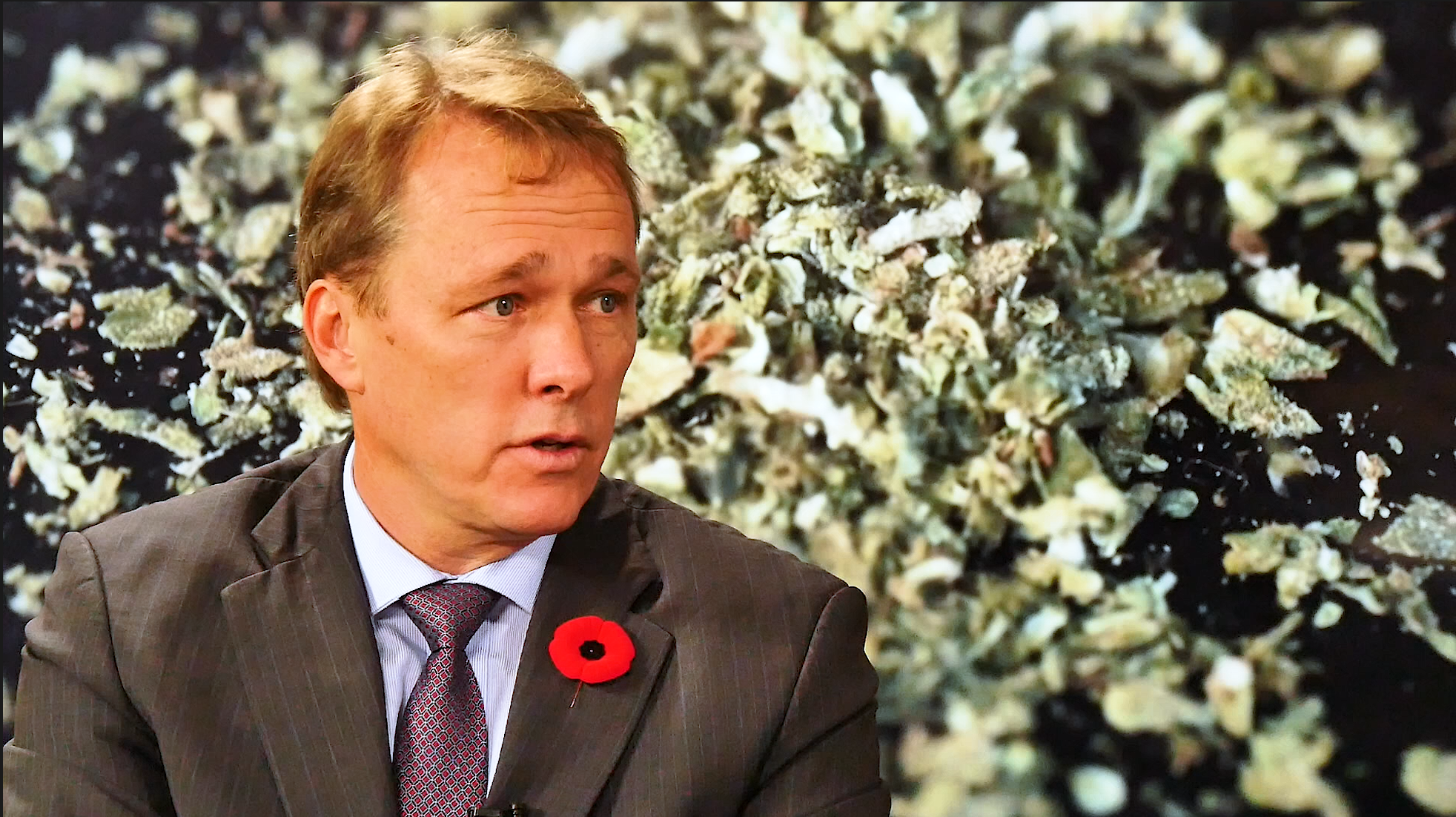 VIDEO: Canopy Growth CEO Bruce Linton on Selling 10 Per ...