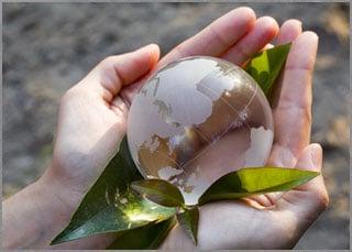 Korn Traducciones es consciente de la importancia de las acciones sostenibles y se asegura de que los puso em práctica con inversión social!