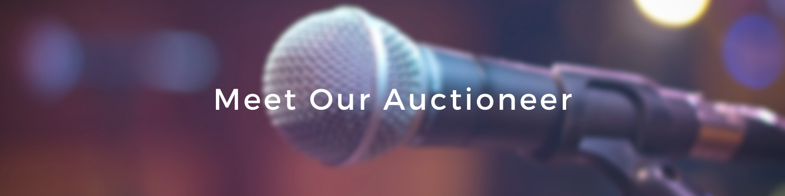 Meet Our Auctioneer