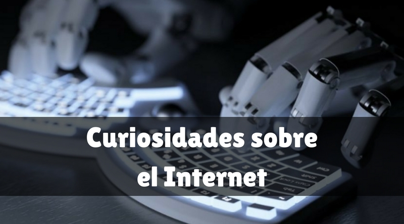 Curiosidades sobre el Internet - Mi gato curioso