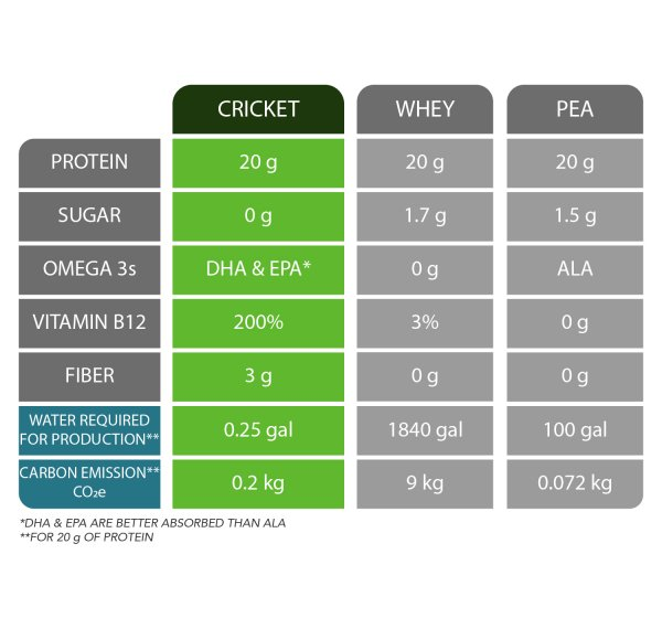 mighty cricket protein powder whey soy pea comparison best healthy clean allergen free gluten organic sustainable
