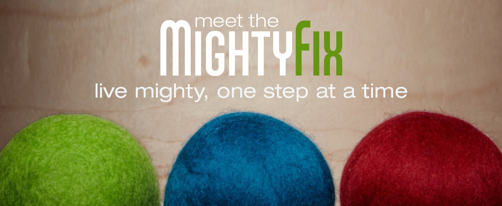 The MightyFix - Dryer Balls