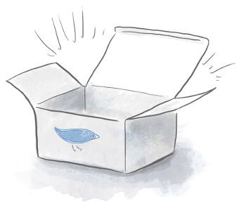 Fix box x300