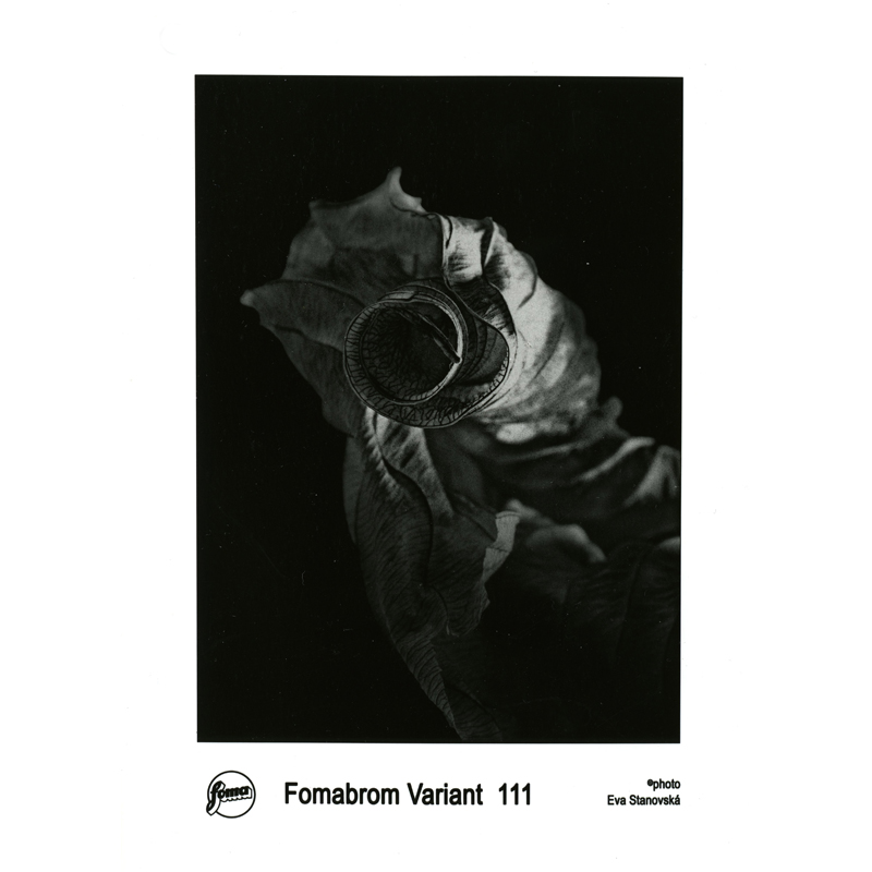 fomabrom variant 111