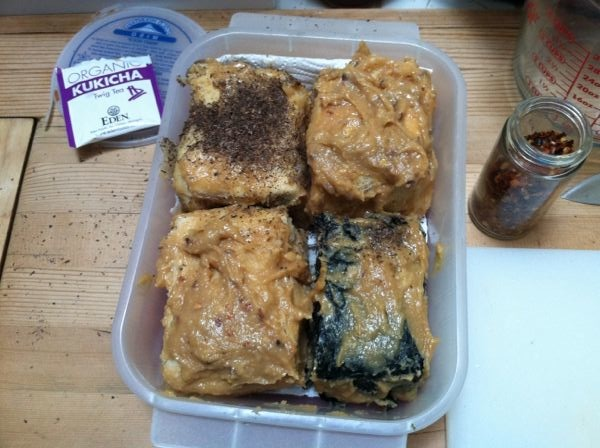 Blocks of tofu in miso-marinade, before aging.
