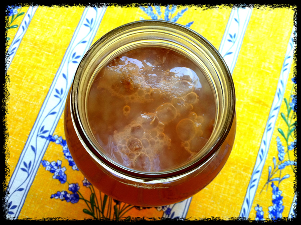 Bubbly SCOBY in glass jar with brewing kombucha