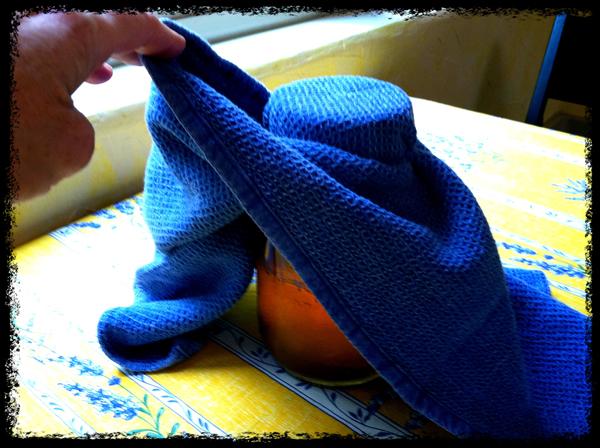 How to make kombucha in a covered jar
