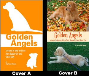 Golden Angels book cover art