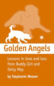 Cover art for Golden Angels e-book by Recipe Renovator