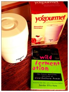 Yogourmet + Wild Fermentation giveaway on Recipe Renovator
