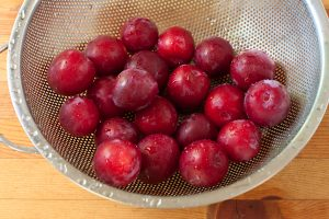 Freshly washed plums | Recipe Renovator