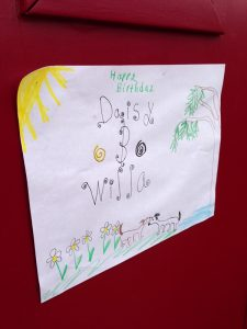 Daisy Birthday drawing
