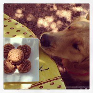 Daisy Almond Butter Cookies
