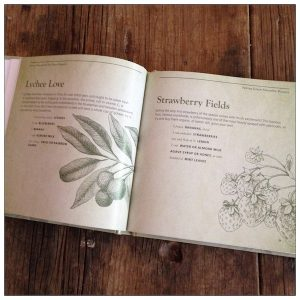 Green Smoothies book review | Recipe Renovator