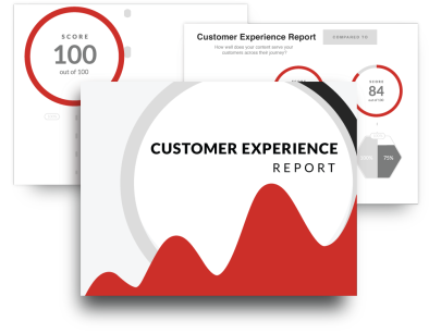 Customer Experience report