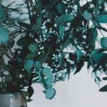 Blog Series of 2016